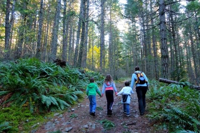 family woods