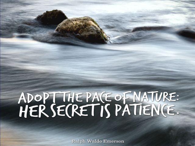 Ralph-Waldo-Emerson-Adopt-the-pace-of-nature-Her-secret-is-patience