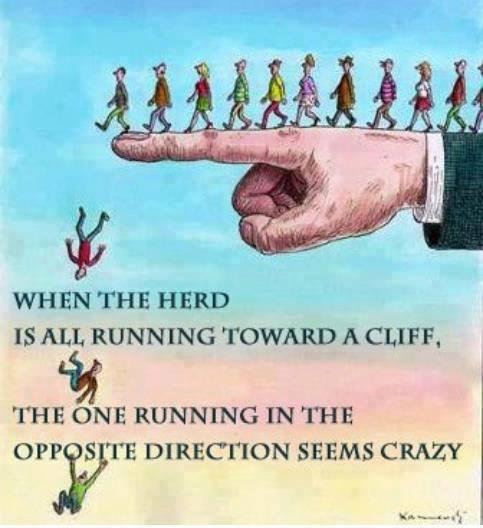 Run Herd