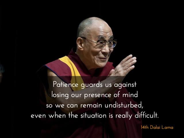 Patience DL